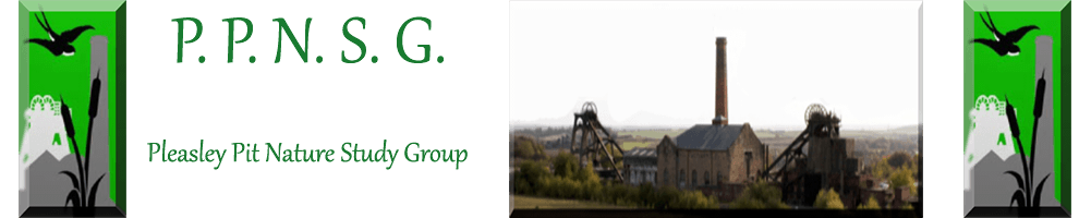 Pleasley Pit Nature Group